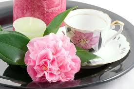 High-tea-cup-pink-flower