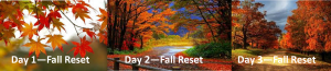 Banner of 3 Fall Photos